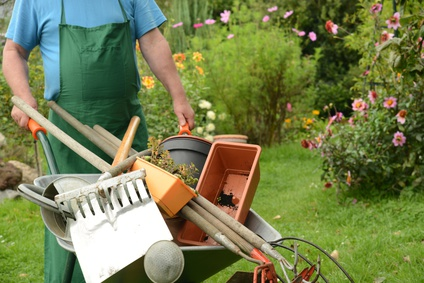 Gartenwerkzeuge werden in einer Schubkarre geschoben